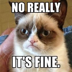 its-fine-grumpy-cat